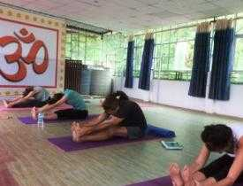 Advanced Yoga Teachers' Training Course in Yoga