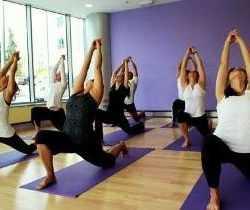 Yoga Teachers' Training Programme