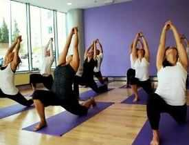 Yoga Teachers' Training Programme