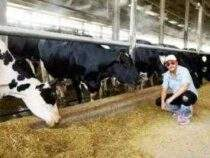 Dairy Farmer Online Course