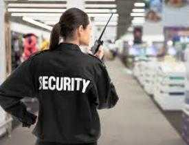 Online course Diploma in Security Supervisor
