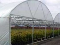 CERTIFICATE IN HORTICULTURE NURSERY MANAGEMENT