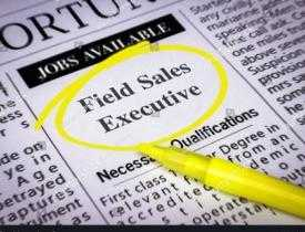 Diploma in field Sales Executive