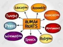 Online Course Post Graduate Diploma in Human Rights