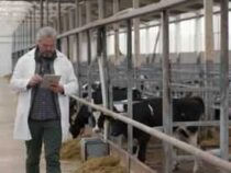 Online courses Diploma in Dairy Farm Supervisor
