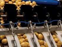 Online Courses Diploma in Fruits and Vegetable Processing